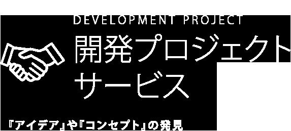 開発プロジェクトサービス 『アイデア』や『コンセプト』の発見